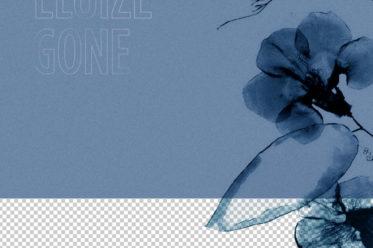 Eluize - Gone LP on Craigie Knowes