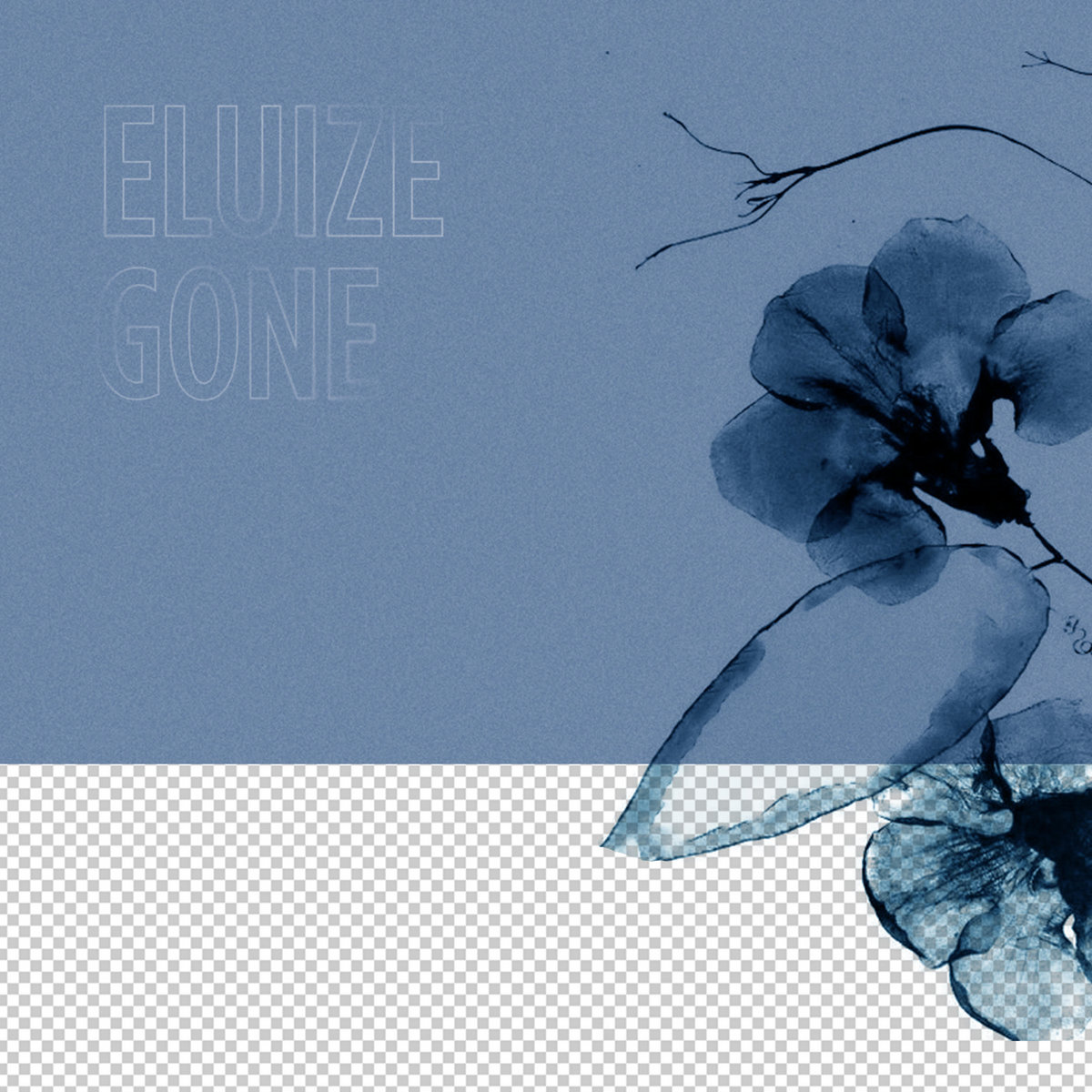 Eluize - Gone LP on Craigie Knowes